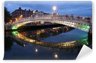 Vinylová Fototapeta Ha'penny most v irském Dublinu, v noci