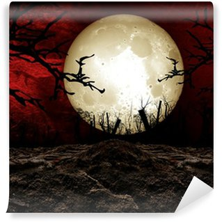 Vinylová Fototapeta Halloween Festival Background