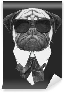 Vinylová Fototapeta Hand drawn fashion Illustration of Pug Dog with sunglasses. Vector isolated elements.