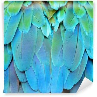 Vinylová Fototapeta Harlequin papoušek peří