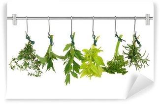 Vinylová Fototapeta Herb Listy sušení