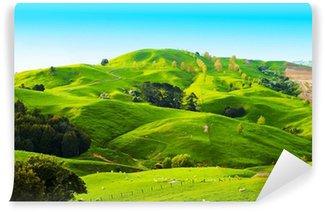 Vinylová Fototapeta Hills Nového Zélandu