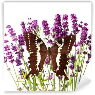 Vinylová Fototapeta Hnědý motýlek s čerstvými květy levandule