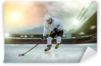 Vinylová Fototapeta Hokejista na ledě. Otevřený stadion - Winter Classic hra
