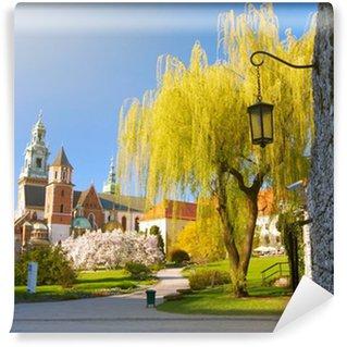 Vinylová Fototapeta Hradu Wawel. Krakow