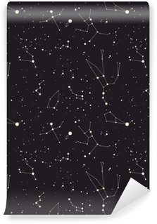 Vinylová Fototapeta Hvězda souhvězdí vektor