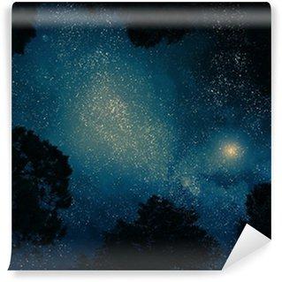 Vinylová Fototapeta Hvězdná obloha přes stromy