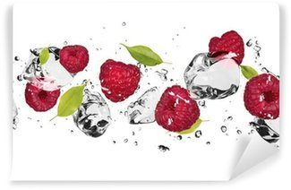 Vinylová Fototapeta Ice ovoce na bílém pozadí