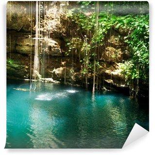 Vinylová Fototapeta Ik-Kil Cenote, Chichen Itza, Mexiko