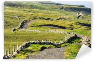 Vinylová Fototapeta Irská krajina, Co Clare