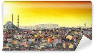 Vinylová Fototapeta Istanbul mešita s barevnými vilové čtvrti v západu slunce