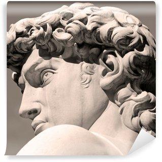 Vinylová Fototapeta Italské umění, David Michelangelo