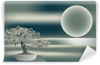 Vinylová Fototapeta Japonský javor bonsai