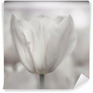 Vinylová Fototapeta Jemné umění close-up tulipánů, rozmazané a ostré