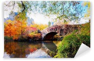 Fototapeta Winylowa Jesień w centralnym parku, new york