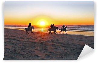 Vinylová Fototapeta Jízda na koni na pláži při západu slunce