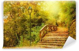 Vinylová Fototapeta Kamenné schody v parku