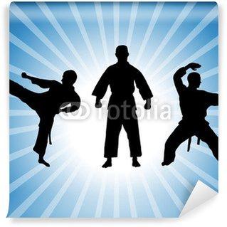 Vinylová Fototapeta Karate - 41
