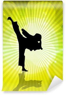 Vinylová Fototapeta Karate ilustrace