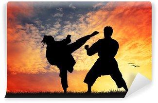Vinylová Fototapeta Karate při západu slunce