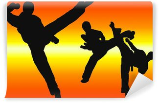 Vinylová Fototapeta Karate