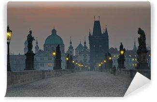 Vinylová Fototapeta Karlův most, Pražský