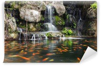 Vinylová Fototapeta Koi ryby v rybníku na zahradě s vodopádem