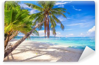 Vinylová Fototapeta Kokosová palma na bílé písečné pláži