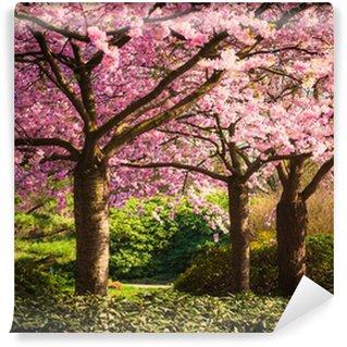Fototapeta Vinylowa Kolory wiosny