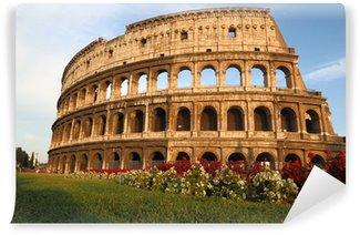 Vinylová Fototapeta Koloseum v Římě - Itálie