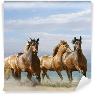 Fototapeta Vinylowa Konie uruchomić