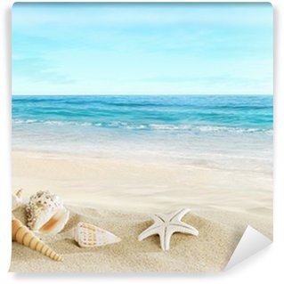 Vinylová Fototapeta Krajina s mušlí na tropické pláži