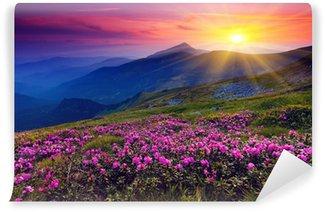 Fototapeta Winylowa Krajobraz górski z purpurowymi kwiatami