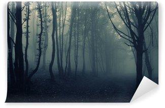Fototapeta Vinylowa Krajobraz las z mgły