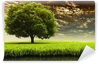 Fototapeta Winylowa Krajobraz wiosna