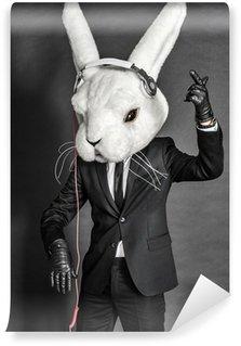 Vinylová Fototapeta Králík Dj v obleku vaších na tmavém pozadí