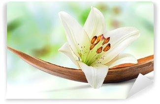Vinylová Fototapeta Krásná bílá lilie květ na listu kokosové palmy