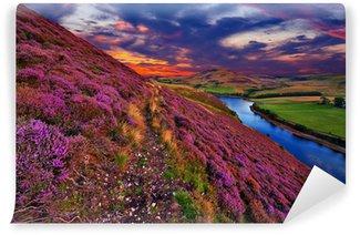 Vinylová Fototapeta Krásná krajina skotského přírody