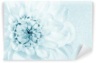 Vinylová Fototapeta Krásná květina jiřina