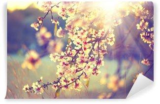 Vinylová Fototapeta Krásná příroda scéna s kvetoucí strom a sluneční erupce