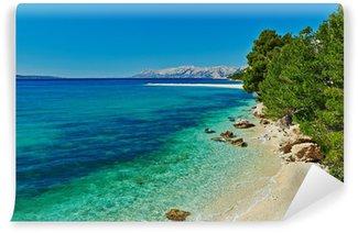 Vinylová Fototapeta Krásná zátoka Jaderské moře s borovicemi v Chorvatsku
