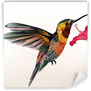 Vinylová Fototapeta Krásné barevné kolibřík s květem