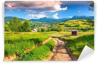 Vinylová Fototapeta Krásné letní krajina v horách obci