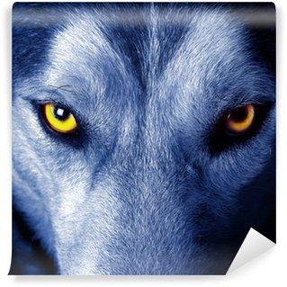 Vinylová Fototapeta Krásné oči divokého vlka.