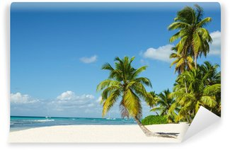 Vinylová Fototapeta Krásné vysoké palmy a bílé písečné pláže