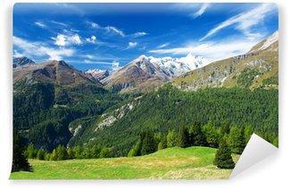 Vinylová Fototapeta Krásný výhled na rakouských alpách