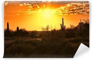 Vinylová Fototapeta Krásný západ slunce pohled na arizonské poušti s kaktusy