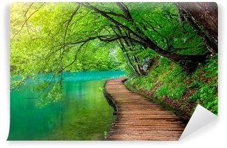 Vinylová Fototapeta Křišťálově čistá voda a dřevěné cestu. Plitvická jezera, Chorvatsko