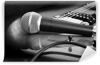 Vinylová Fototapeta Kytaru a mikrofon