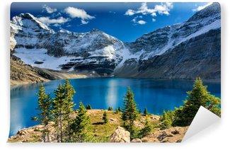 Vinylová Fototapeta Lake McArthur, Národní park Yoho